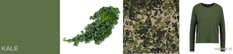 kleur kale-groen