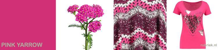 kleur pink-yarrow-roze